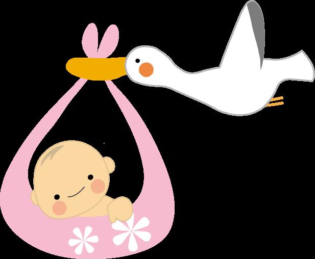 赤ちゃんとコウノトリ