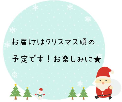 クリスマス頃お届け
